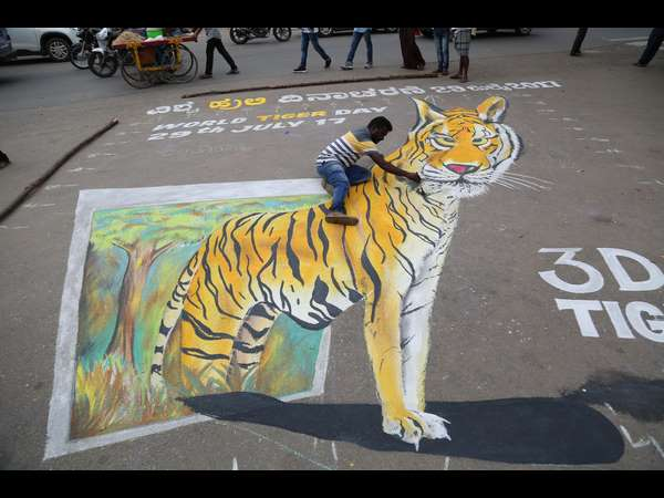 A painter in Mysuru has painted a tiger's 3D image infront of Mysuru