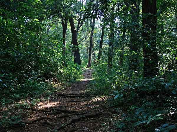 Rangayyanadurga Sanctuary Is Now An Eco Sensitive Zone