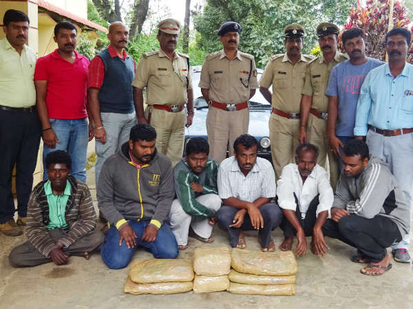 Kodagu Police Arrest 6 Ganja Peddlers 14 Kg Ganja Seized