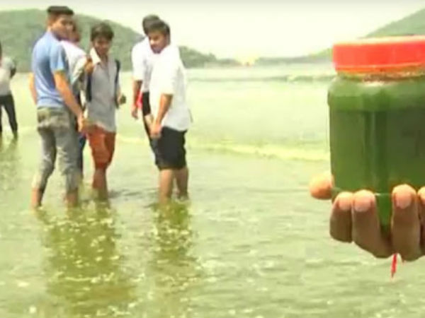 Karwar sea turns green - Fishermen in fear