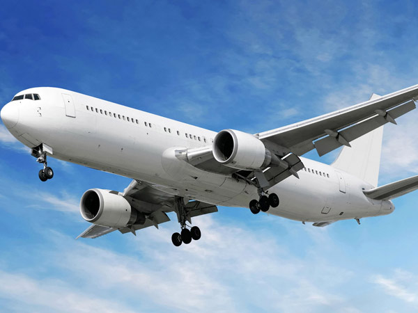 Government releases no fly list rules for unruly passengers