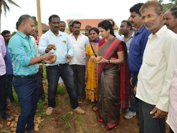 Give vegetables instead of Fruits to guests says Hassan DC Rohini Sindhuri