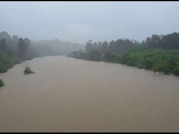 Rain Creates Problem For Kodagu Farmers