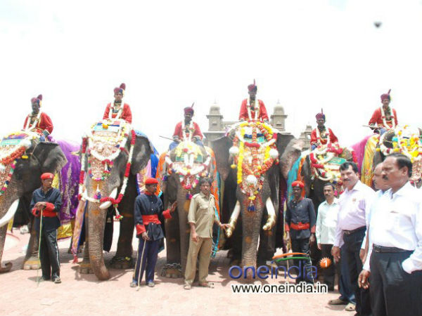 Mysuru Dasara: CCTV cameras in Jamboo Savari elephants' training premise