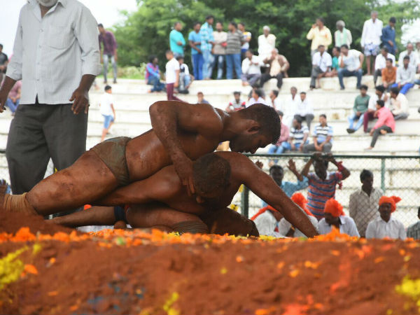 Wrestling Competition In Mysuru Dasara Festival
