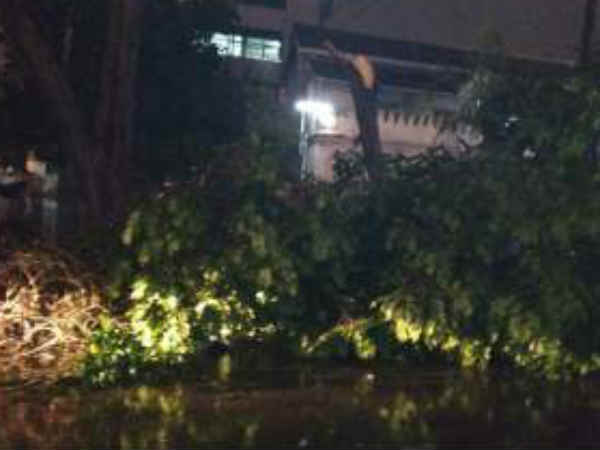 Heavy rain in Bengaluru on September 8 claims 4 lives