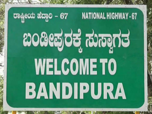 Bandipur National Park entry and safari fees hiked, effect from November 1