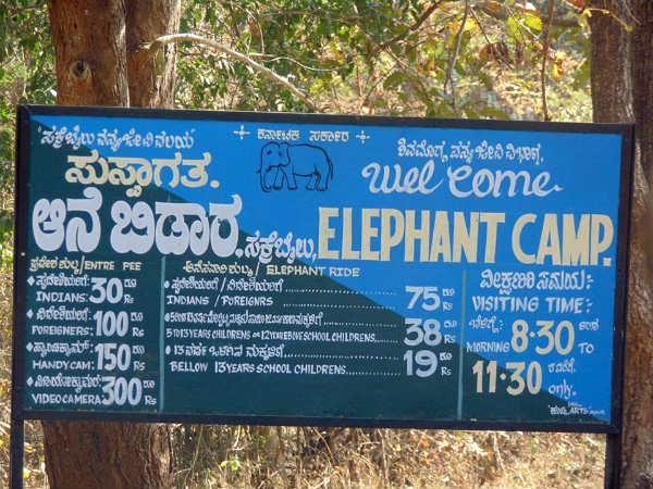 5 Elephants Of Sakrebailu Camp Will Shift To Uttar Pradesh