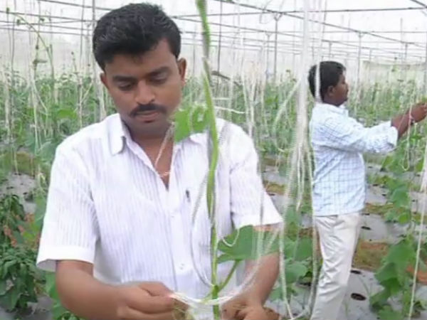Yadgir Engineer Finds Solace Agriculture