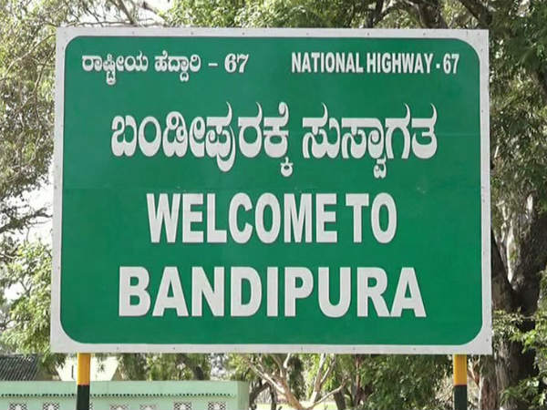 Chamarajanagar Bandipur National Park Entry And Safari Fees Hiked