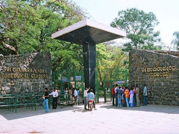 Free entry to Mysuru zoo who registered a name for Kannada Sahitya Sammelana