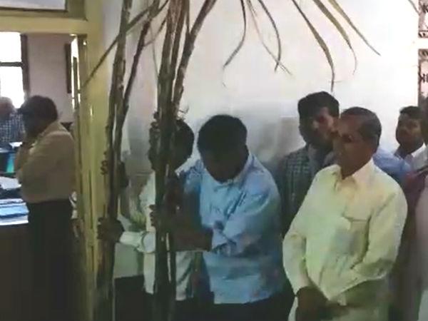 Sugar Cane Crop Gets Fire Farmer Demands For Componsation