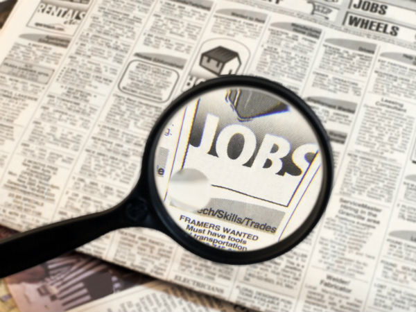 Job Fair In District Employment Exchange Office On January