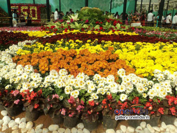 Lalbagh Witnessed 50k Visitors On Weekend