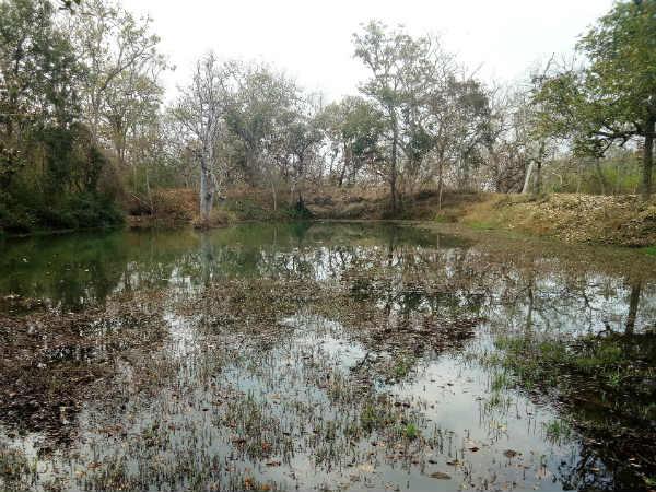 Chamarajanagar Empty Lakes Filled By Solar Motor