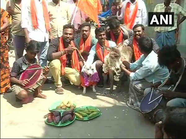 Dog, donkey married amid Valentine's Day protest in Chennai