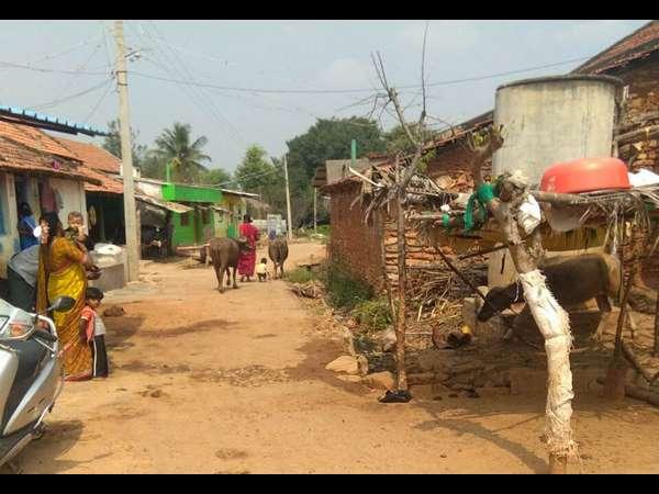 Problems Face By Karadikoppalu Village In Mandya Constituency