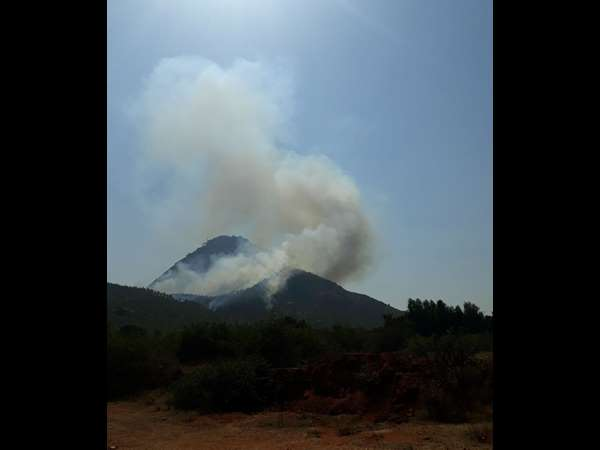 Wildfire on nandi hills, situation under control