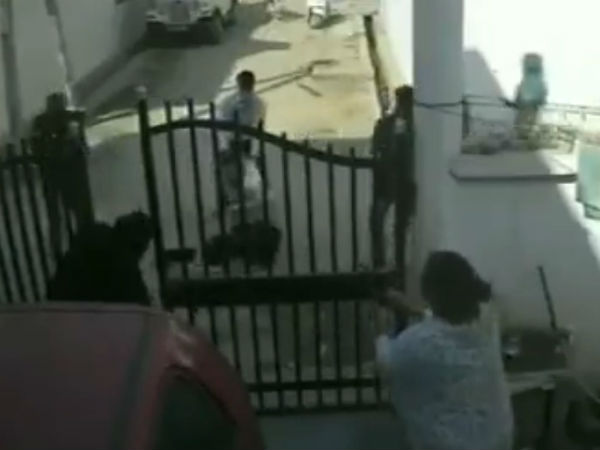 Viral Video Wife Saves Her Husband From Goons By Opening Fire