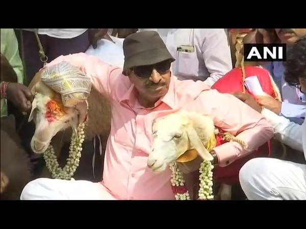 Vatal Nagaraj Demands To Declare Holiday On Valentines Day