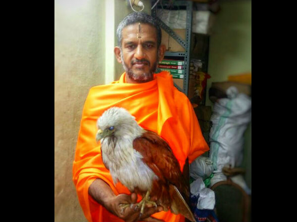Vishwa Prasanna teertha of Pejawar mutt saved Garuda bird