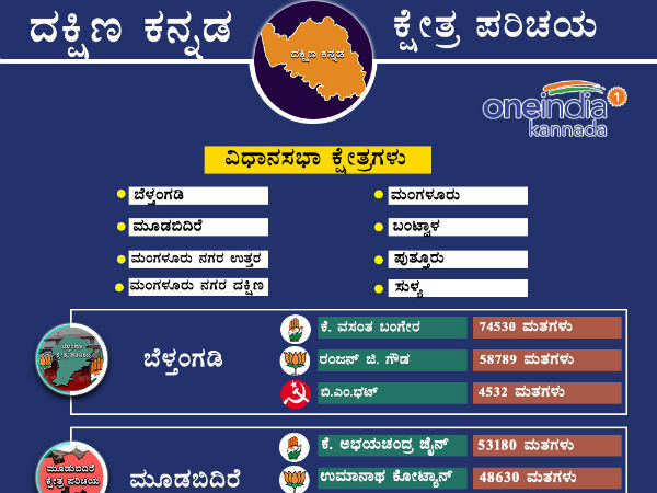 Dakshina Kannada District 2013 Assembly Election Results