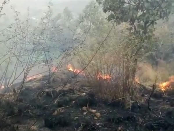 Students Are Reportedly Trapped The Forest Fire Tamilnadu