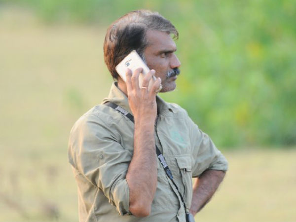 IFS officer Manikanthan killed in an Elephant attack