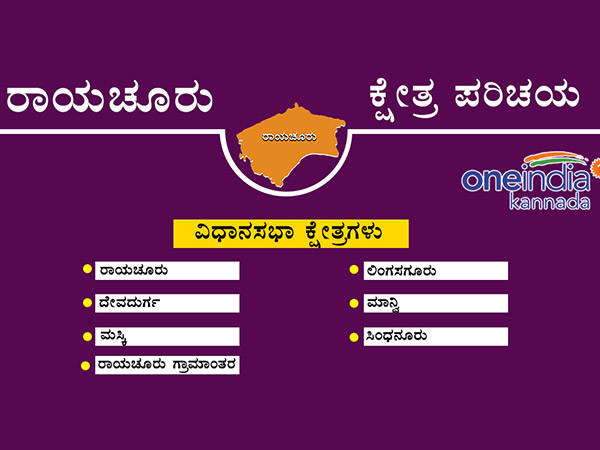 Raichur District 2013 Assembly Elections Result