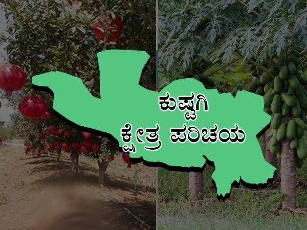 ಕುಷ್ಟಗಿ ಕ್ಷೇತ್ರ ಪರಿಚಯ: ಬಿಜೆಪಿ-ಕಾಂಗ್ರೆಸ್ ನಡುವೆ ಜಿದ್ಧಾಜಿದ್ದಿಯ ಹೋರಾಟ