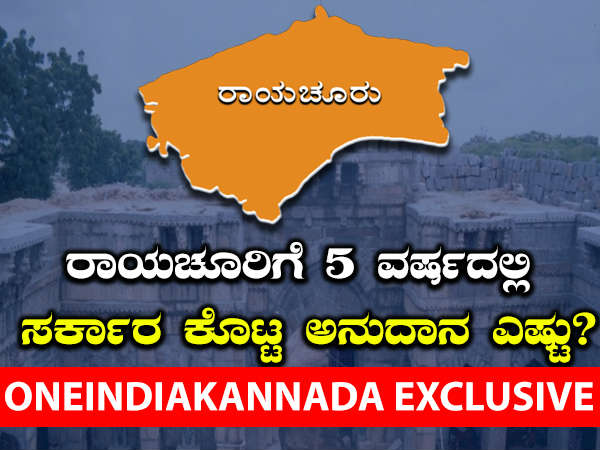 Government Grants To Raichur District Assembly Constituencies