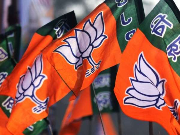 BJP set mission 300 goal for MP elections