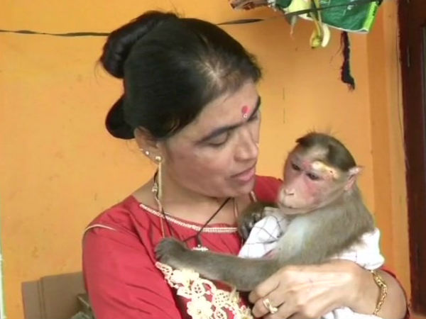 Karnataka Cop Rescues Electrocuted Monkey Wins Hearts