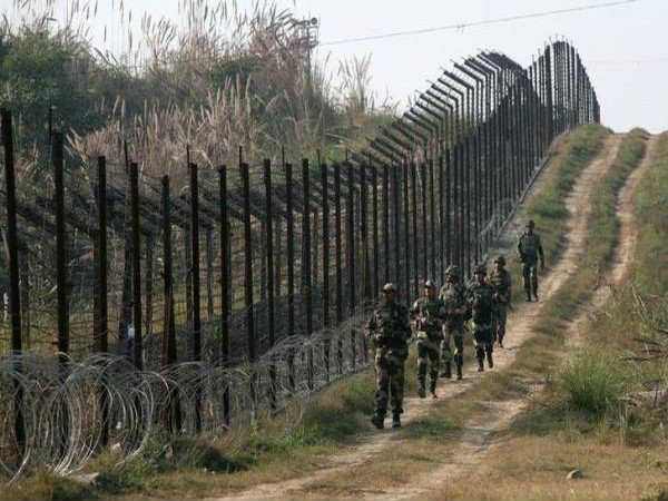 bsf have apprehended two pakistani nationals in samba sector
