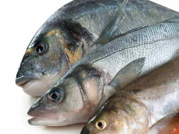 Fisheries organization clarifies no chemical spray on fish