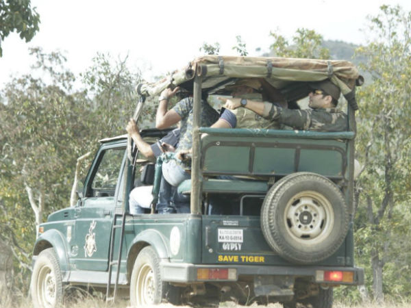 Forest department to handover safari responsibility to Jungle lodges?