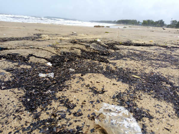 Karwar Ravindranath Tagore Beach has turned black today