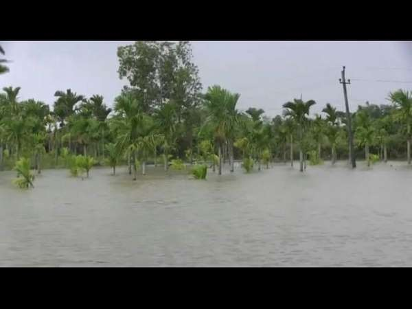 Water level in the Varada river has reached a level of risk