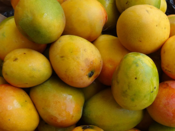 karnataka government to announce support price for mango
