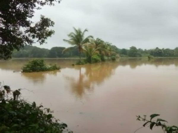 Monsoon Update: Heavy to heavy rain in coastal, south, north interior Karnataka