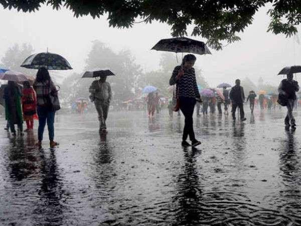 Special Pooja For Pyati Basaveshwara In Haveri For Rain