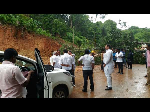 Tree falls on Shiradi Ghat road , path blocked for ministers convoy