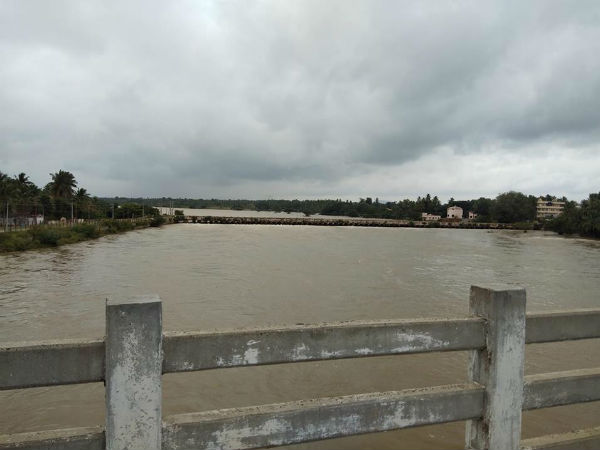 Drowned farmland in Mysore district