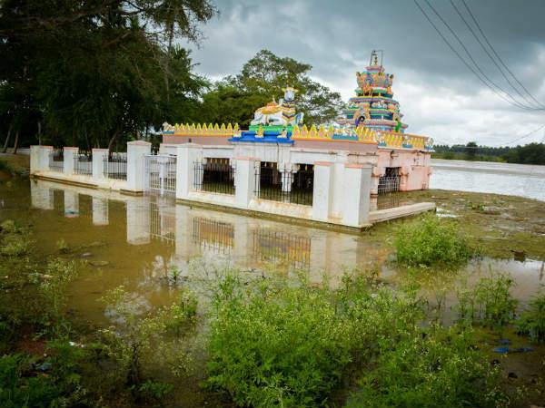ಮೈಸೂರು ಭಾಗ ಪ್ರವಾಹದಿಂದ ಮುಕ್ತ: ಸಾಂಕ್ರಾಮಿಕ ರೋಗ ವ್ಯಾಪಿಸುವ ಭೀತಿ