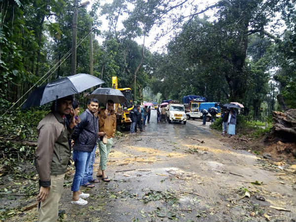 Rainfall is still continue on Sunday at coffee nadu Chikmagalur