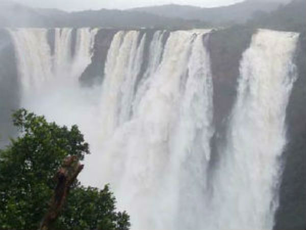 glory of jog falls is back after four years