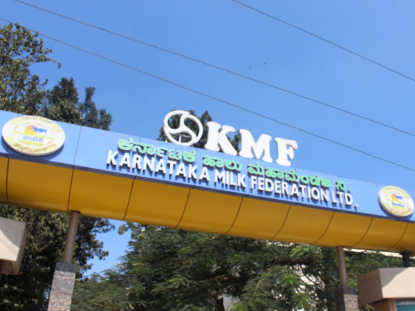 KMF forcefully selling ghee to farmers in spite of paying money for milk