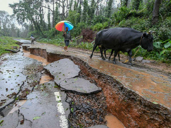 Now Rainfall in Kodagu district has declined