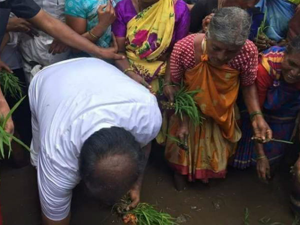 planting paddy program is not for politicl gain: Kumaraswamy