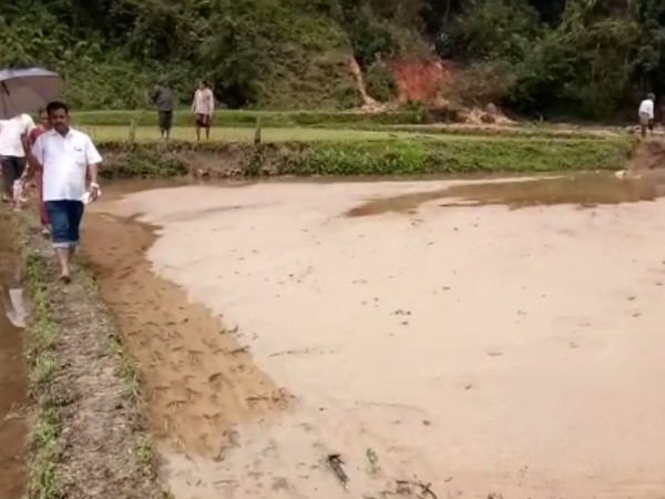 25 Acres Of Paddy Fields In Hulugaru Bilu Village Have Been Completely Damaged